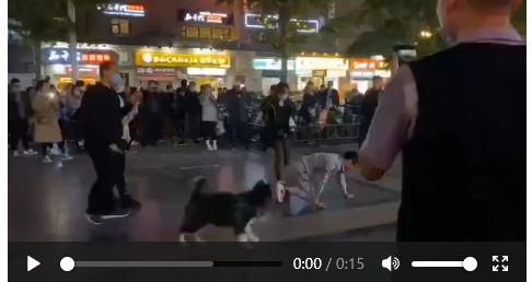 郑州市金水区金水升龙广场女子鞭打男子